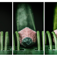 GREEN PENCIL RACE - ACCEPTANCE - NELSON NATIONAL TRIPTYCH COMPETITION - 2014